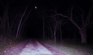 scary road